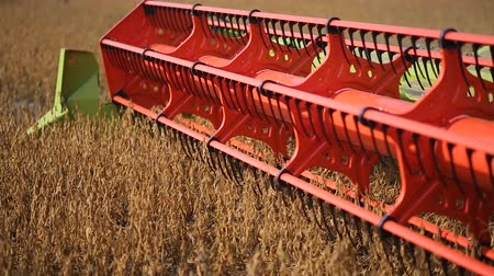 соя : Harvester machine working in field . Combine harvester, agriculture machine harvesting golden soybean field