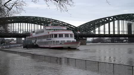wetness : High water on the Rhine river in Cologne, Germany