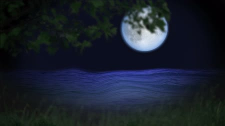 river ocean : Mystic forest night with blue moon  and water Stock Footage