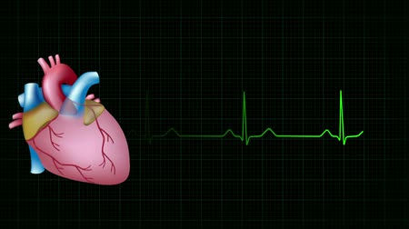 pulso : heart beats accurately matching ecg loop Vídeos