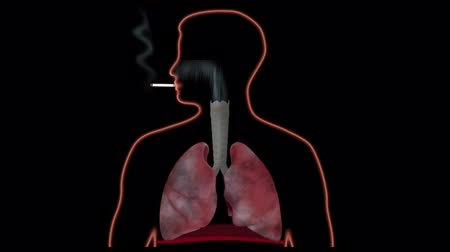 akciğer : Effect of smoking on lungs