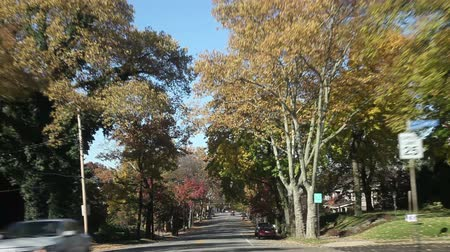 honit : Fast driving (10X)  through a typical american street in autumn, Pittsburgh, Pennsylvania