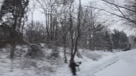 drive : Drive through snowing forest, contains people in the last few frames