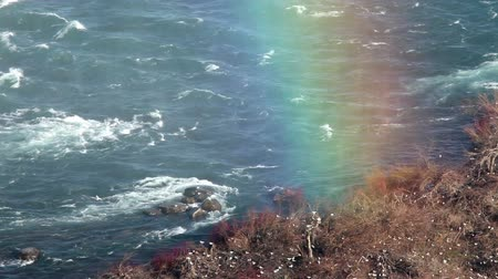 gaivota : The end of the rainbow at Niagara falls Stock Footage