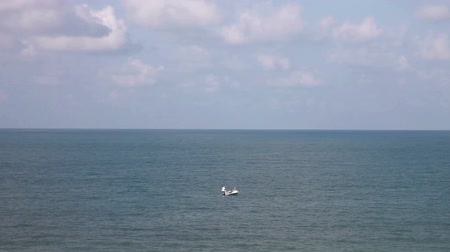 ostrovy : Small fishing boat floating alone in the sea, Sarasota, Florida. Dostupné videozáznamy
