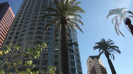 Калифорния : Downtown Los Angeles