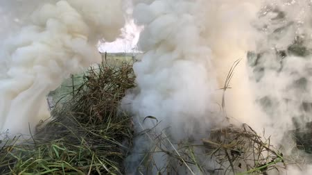 smolder : Close up of ashes, flames and smoke from burnt leaves, detailed structure Stock Footage