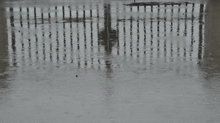 gates : rain on asphalt and metal gate reflection Stock Footage