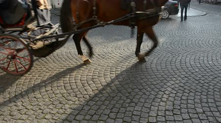 sáně : historical carriage wheels and horse pedals in motion