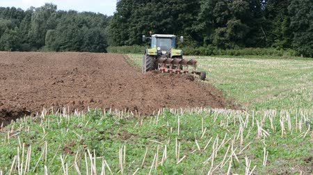tractor trailer : tractor plowed autumn rapes field after harvesting Stock Footage