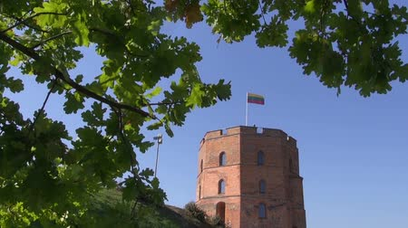 litvánia : Vilnius historical Gediminas castle tower with flag and oak