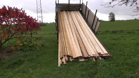 sawn : sawn timber planks stack in truck