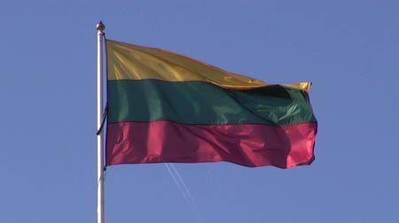 litvánia : Lithuanian national flag in wind and airplane on sky