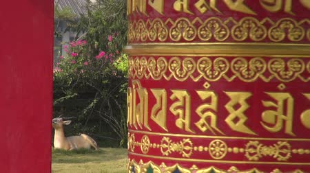 tybet : beautiful ornamental buddhist prayer wheel in Lumbini, Nepal Wideo