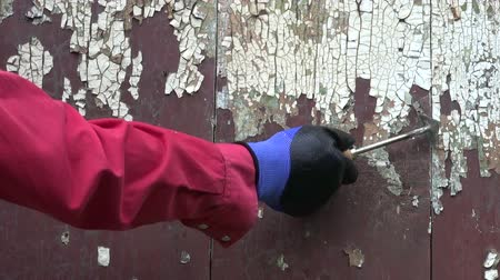 шпатель : worker hand scraping old paint from wooden wall