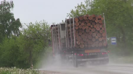 лесоматериалы : truck car with wood timber on road Стоковые видеозаписи