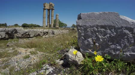 tripping : historical  Apollo temple ruins columns in acropolis, Rhodes, Greece. 4K