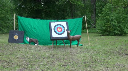 unlucky : archery target and animals sculpture in park