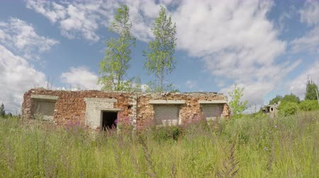 cegła : Desolate red bricks building in the wild meadow, 4K Wideo