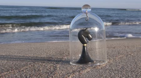 şövalye : Chess game knight figure by the sea covered with glass piece
