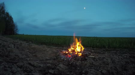 şenlik ateşi : Bonfire campfire burning outdoors by the forest and field in evening, 4K Stok Video