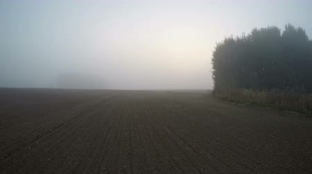 autumns : Sun rising through the fog on freshly plowed field in early autumns morning, time lapse 4K Stock Footage