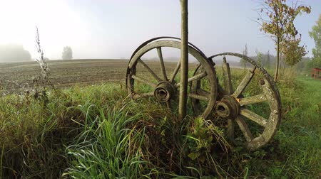 autumns : Two wooden horse carriage wheels by the young tree in fields on misty autumns morning, time lapse 4K