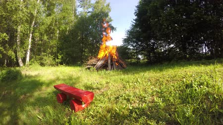 şenlik ateşi : bonfire in sunny summer day near tree in park, time lapse 4K Stok Video