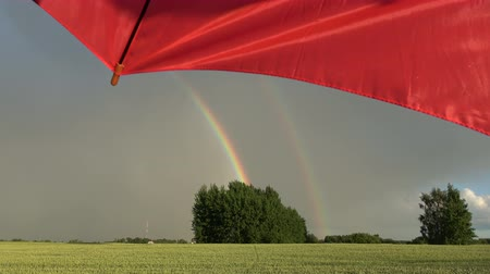 szépen : Beautiful  evening rainbow over farmland fields and red umbrella fragment