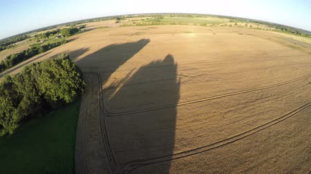 Литва : Evening time agriculture farmland field with tree shadows, aerial view from drone