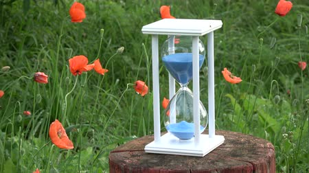 sandálias : Summer time hourglass sandglass with blue sand motion  and red orange poppy blossoms in garden