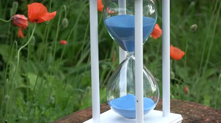 sandálias : Hourglass sandglass with blue sand motion  and red orange poppy blossoms in garden Stock Footage
