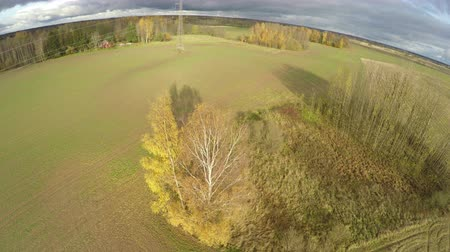 cropland : Drone fly up over autumn november farmland landscape with trees and crop fields,aerial view Stock Footage