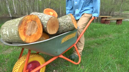 woodcut : Worker transporting sawed fresh raw firewood with wheelbarrow near pond in farm Stock Footage