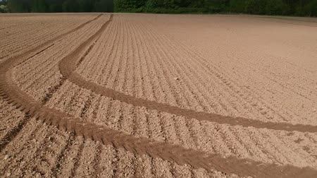 свиноматка : Freshly sowed spring time agriculture field soil with lines, aerial view
