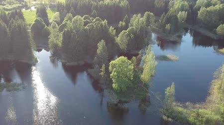 litvánia : Drone fly above lake landscape with trees in spring time, aerial view