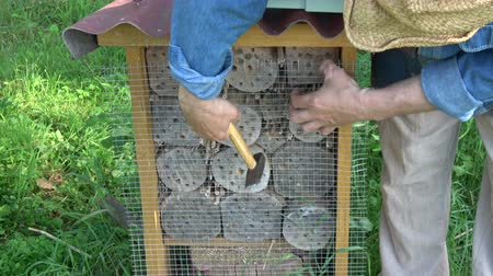 konzervace : Fixing metal net on insect hotel for protection from woodpeckers
