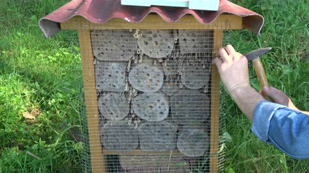 hibernation : protection insect hotel  from woodpeckers – gardener fixing metal net