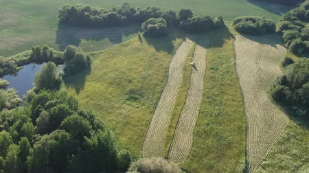 Agriculture old tractor cut hay grass on midsummer meadow near pond, aerial view