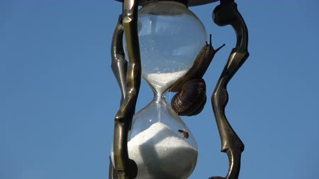 metaphors : Rotating vintage hourglass sandglass with snail and sand motion on sky background Stock Footage