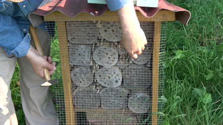 preservação : protect insect hotel  from woodpeckers –  fixing metal net