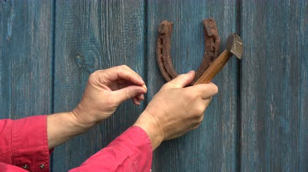 good fortune : Hammering hanging old rusty horseshoe on blue wooden door