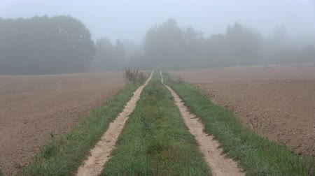 sklizené : Misty empty gravel road in farmland and harvested fields in summer end