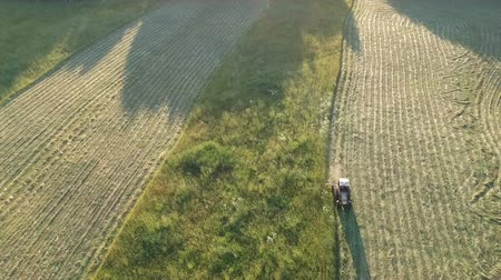 tractor haymaking cut hay grass in evening, aerial view Stock mozgókép