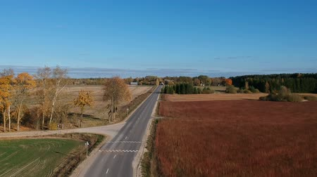 trigo sarraceno : Autumn time asphalt road and agriculture fields, aerial view Vídeos