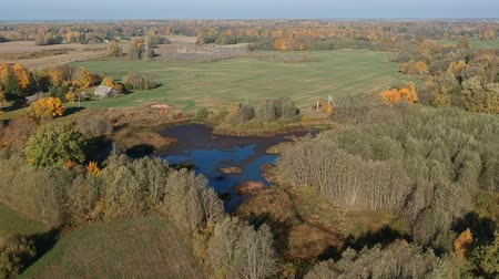 agricultural lands : Autumn farmland landscape with blue pond and golden october trees groves, aerial view