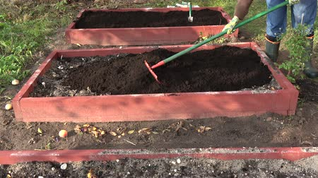 熊手 : gardener woman raking mould in new wooden raised garden bed
