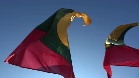 üç renkli : Three Lithuanian national flags in wind on sky background