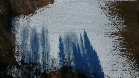 geçen : Beautiful blue early spring tree shadows on last snow, aerial view