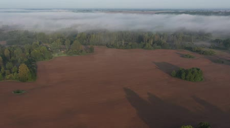 litvánia : Beautiful misty early morning landscape with forest and plowed fields, aerial view